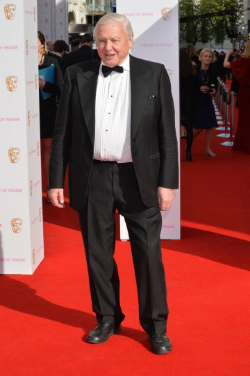 Sir David Attenborough, nominee for the Specialist Factual category, arrives at London's Theatre Royal