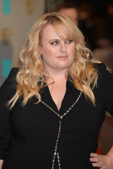 Rebel Wilson poses for the cameras on the red carpet