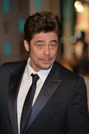 Benicio Del Toro, nominated for his supporting role in Sicario, takes to the red carpet