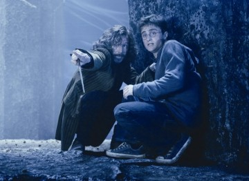 Harry and pure-blood wizard Sirius Black (played by Gary Oldman) face a treacherous situation in this scene of the fifth film.