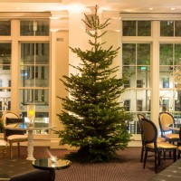 Enjoy festive touches around the building